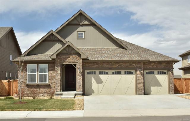 15873 Elizabeth Circle, Thornton, CO 80602 (#4163190) :: Wisdom Real Estate