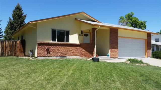 7259 W Frost Drive, Littleton, CO 80128 (#4163220) :: Colorado Home Finder Realty