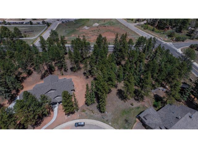 640 Chipmunk Drive, Woodland Park, CO 80863 (#4164988) :: Bring Home Denver