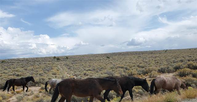 Vacant Land, San Luis, CO 81152 (#4166716) :: The DeGrood Team