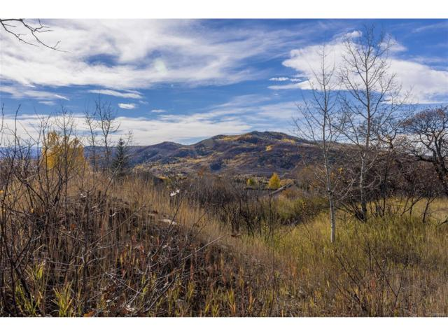 340 Steamboat Boulevard, Steamboat Springs, CO 80487 (#4172757) :: The DeGrood Team