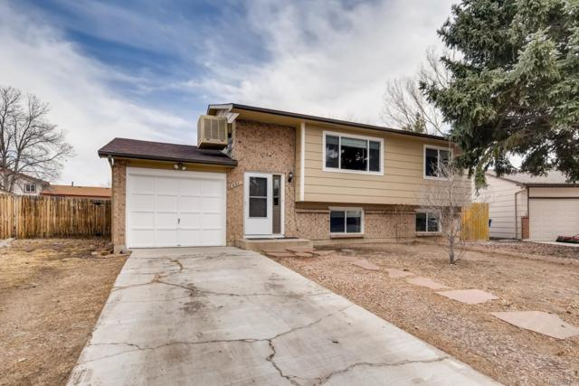 3907 Fetlock Circle, Colorado Springs, CO 80918 (MLS #4181708) :: 8z Real Estate