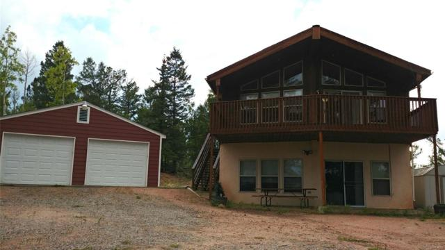 424 Kite Court, Como, CO 80432 (#4182062) :: Structure CO Group