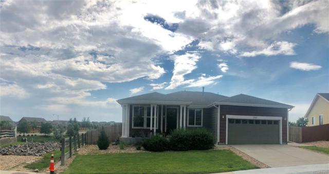 13621 Krameria Street, Thornton, CO 80602 (#4185412) :: The Peak Properties Group