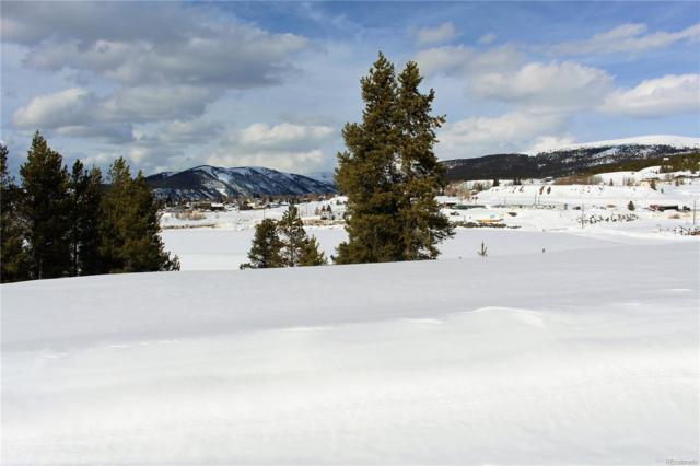 140 Brooklyn Circle, Leadville, CO 80461 (#4185608) :: The Heyl Group at Keller Williams