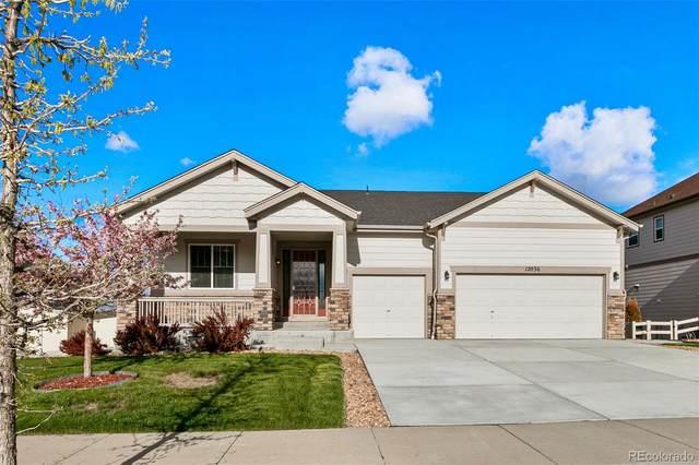 12036 Blakeford Street, Parker, CO 80134 (#4187220) :: Portenga Properties