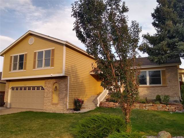 6386 S Pierson Street, Littleton, CO 80127 (#4187428) :: The HomeSmiths Team - Keller Williams