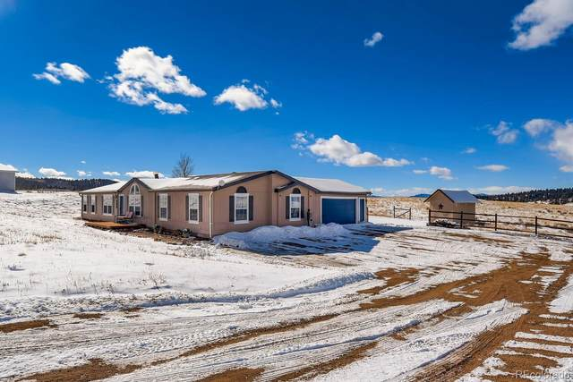569 Golden Grain Lane, Divide, CO 80814 (#4189289) :: The HomeSmiths Team - Keller Williams
