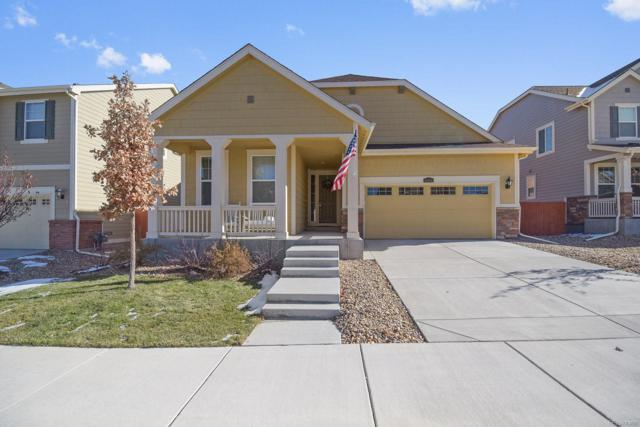 10056 Isle Circle, Parker, CO 80134 (#4192869) :: The HomeSmiths Team - Keller Williams