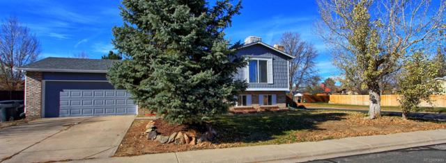 10993 Forest Way, Thornton, CO 80233 (#4193311) :: James Crocker Team