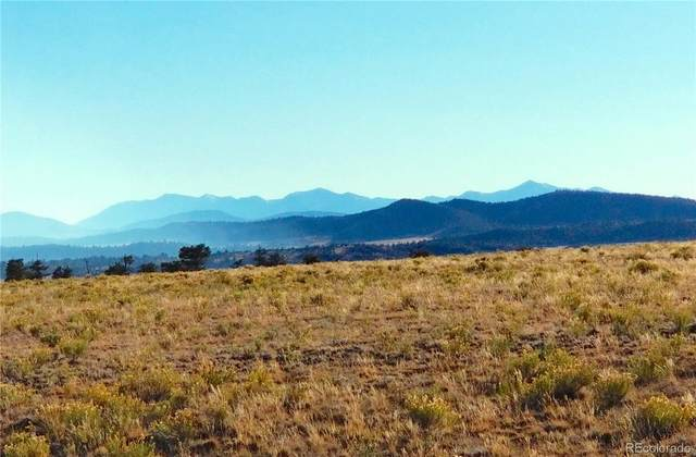 1632 Rocky Mountain Road, Hartsel, CO 80449 (#4198744) :: Mile High Luxury Real Estate
