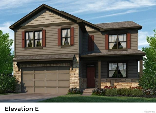 6249 Yellowtail Street, Timnath, CO 80547 (MLS #4198849) :: Bliss Realty Group