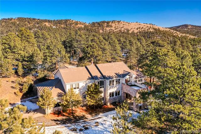 1713 Pinedale Ranch Circle, Evergreen, CO 80439 (#4200240) :: Hudson Stonegate Team