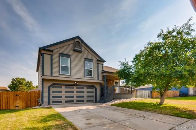 4380 Jericho Street, Denver, CO 80249 (#4201774) :: milehimodern