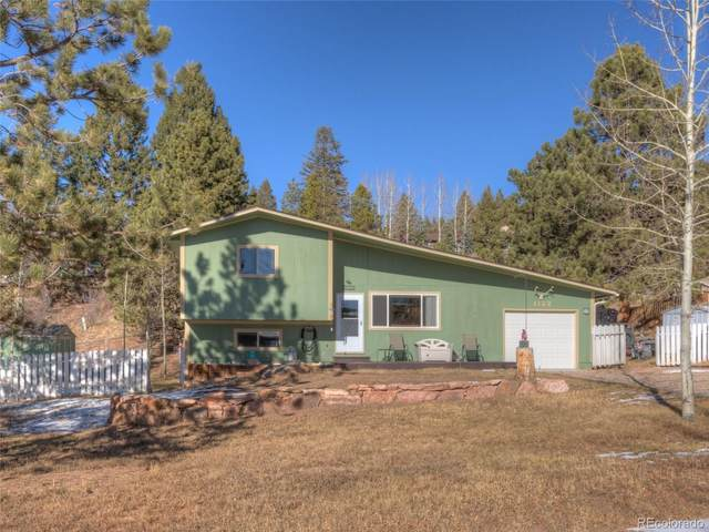 1122 Parkview Place, Woodland Park, CO 80863 (#4202793) :: The DeGrood Team