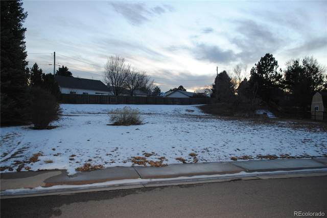 8401 S Newland Court, Littleton, CO 80128 (#4204942) :: The Harling Team @ HomeSmart
