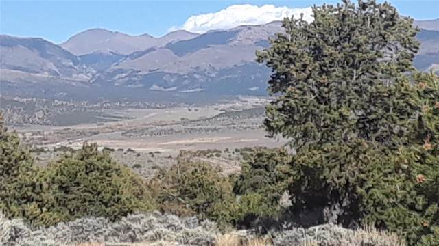 Tbd Wild Horse Drive, San Luis, CO 81152 (MLS #4206211) :: 8z Real Estate