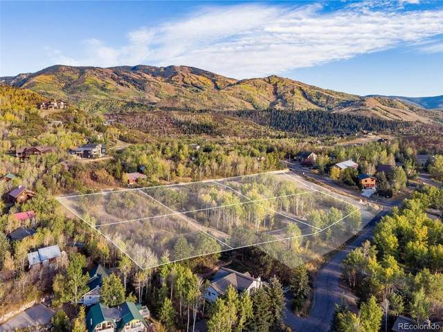 0 Little Kit Lane Lane, Steamboat Springs, CO 80487 (MLS #4206725) :: 8z Real Estate