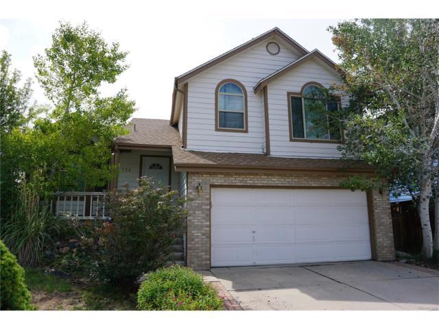 754 Homestead Drive, Highlands Ranch, CO 80126 (MLS #4209485) :: 8z Real Estate