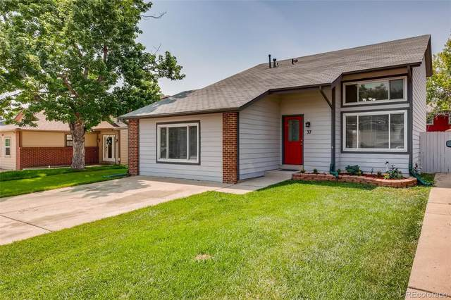 37 Pierce Street, Lakewood, CO 80226 (#4209761) :: Sultan Newman Group