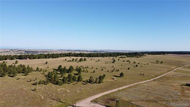 31141 Private Road 23, Elizabeth, CO 80107 (#4210334) :: The DeGrood Team