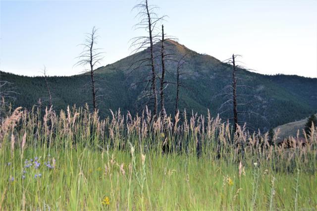 Fourmile Canyon Drive, Boulder, CO 80302 (#4213067) :: The Pete Cook Home Group