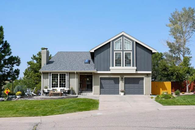 7251 Wembley Place, Castle Pines, CO 80108 (#4215866) :: The Brokerage Group