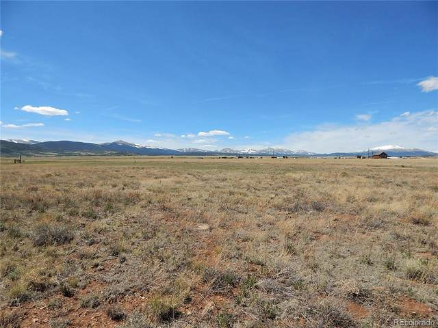 Black Knat Lane, Fairplay, CO 80440 (MLS #4216218) :: 8z Real Estate