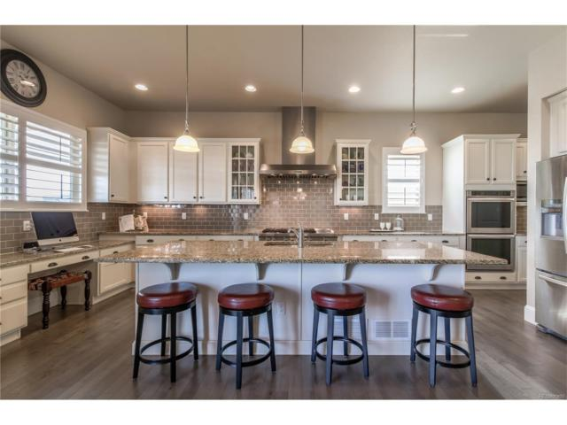 10565 Montecito Drive, Lone Tree, CO 80124 (#4218694) :: The Peak Properties Group