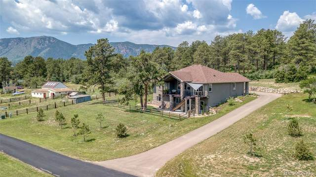 601 Pioneer Haven, Palmer Lake, CO 80133 (#4218813) :: The Colorado Foothills Team   Berkshire Hathaway Elevated Living Real Estate