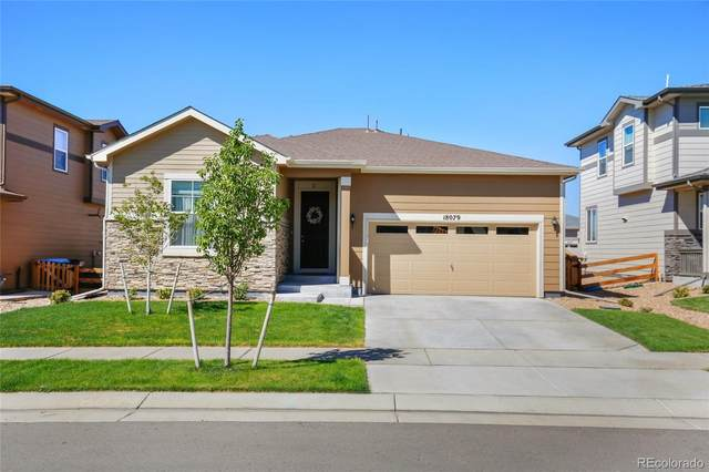 18079 E 99th Place, Commerce City, CO 80022 (#4222152) :: The DeGrood Team