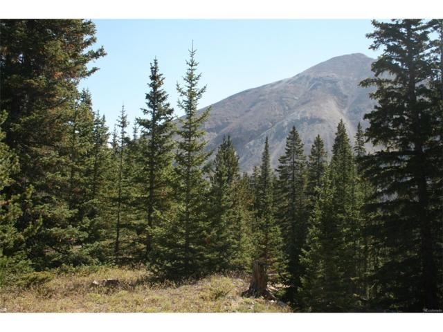 000 Old Leavick Road, Fairplay, CO 80440 (MLS #4222365) :: 8z Real Estate
