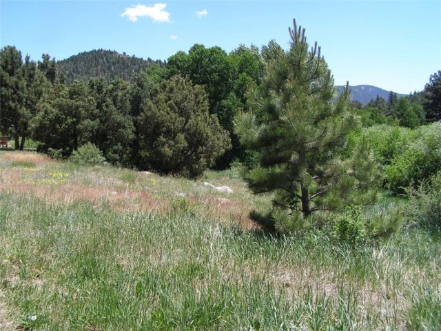 Willow Drive, Lawson, CO 80452 (MLS #4222924) :: 8z Real Estate