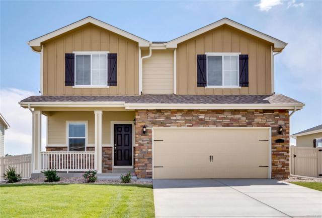 4272 E 95th Circle, Thornton, CO 80229 (#4224010) :: The Galo Garrido Group