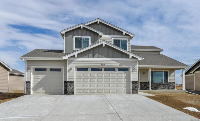 5099 Long Drive, Timnath, CO 80547 (MLS #4224063) :: Bliss Realty Group