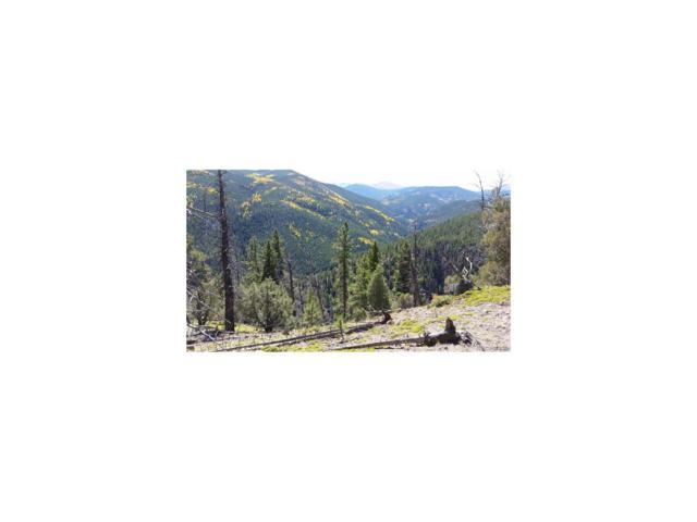 Ute Creek Road, Idaho Springs, CO 80452 (MLS #4227838) :: 8z Real Estate