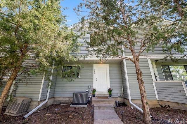 20 S Nome Street E, Aurora, CO 80012 (#4229060) :: The Colorado Foothills Team | Berkshire Hathaway Elevated Living Real Estate