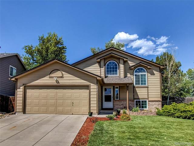 5721 E Melody Way, Castle Rock, CO 80104 (#4229064) :: The DeGrood Team