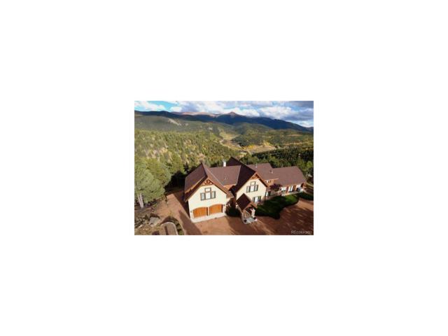 199 Running Elk Point, Divide, CO 80814 (MLS #4229641) :: 8z Real Estate