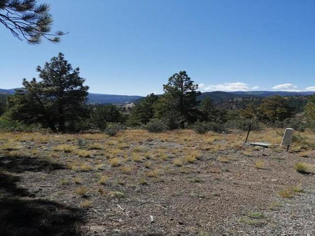 598 N Skyline Drive, South Fork, CO 81154 (#4234123) :: Berkshire Hathaway HomeServices Innovative Real Estate