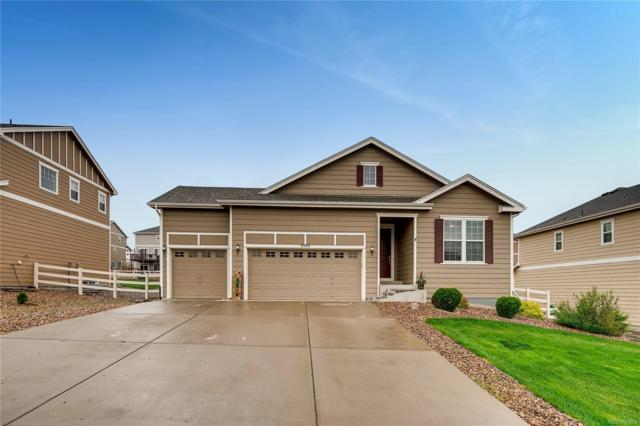 5555 Spring Ridge Trail, Castle Rock, CO 80104 (#4234669) :: The HomeSmiths Team - Keller Williams