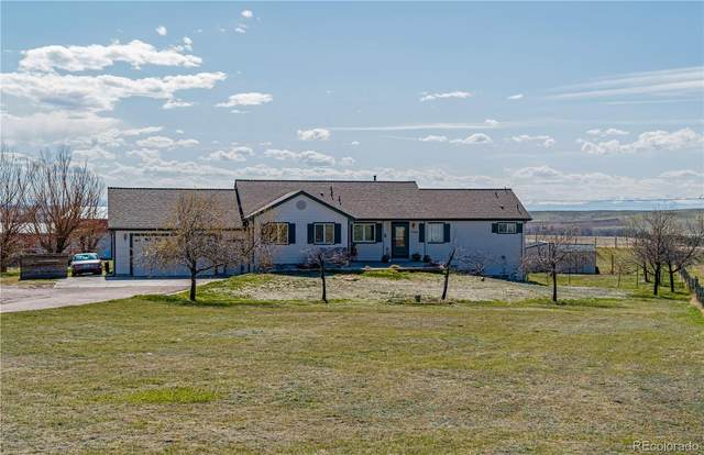 7126 S Shenandoah Drive, Elizabeth, CO 80107 (#4237103) :: Mile High Luxury Real Estate