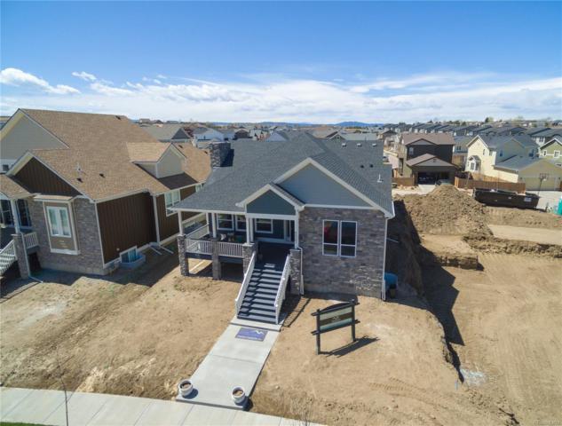 4314 Fell Mist Way, Castle Rock, CO 80109 (#4238077) :: Colorado Team Real Estate