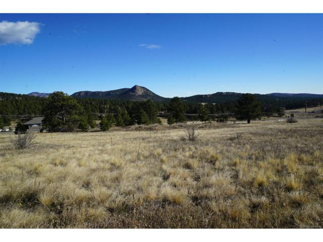 301 Cr 43, Bailey, CO 80421 (MLS #4238164) :: 8z Real Estate