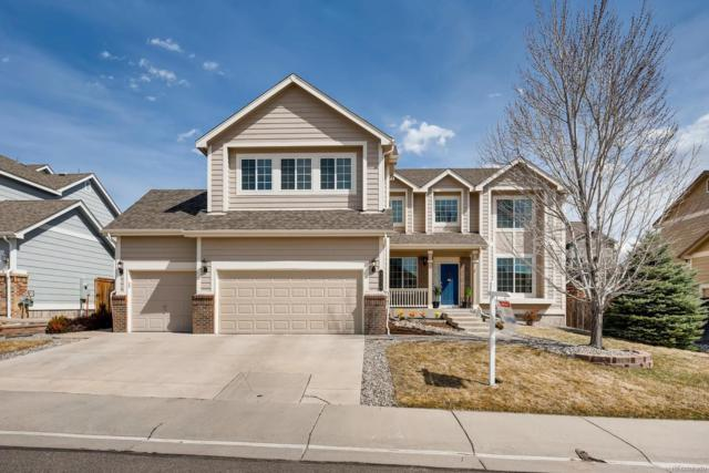 3334 Cremello Court, Castle Rock, CO 80104 (#4241338) :: The Heyl Group at Keller Williams