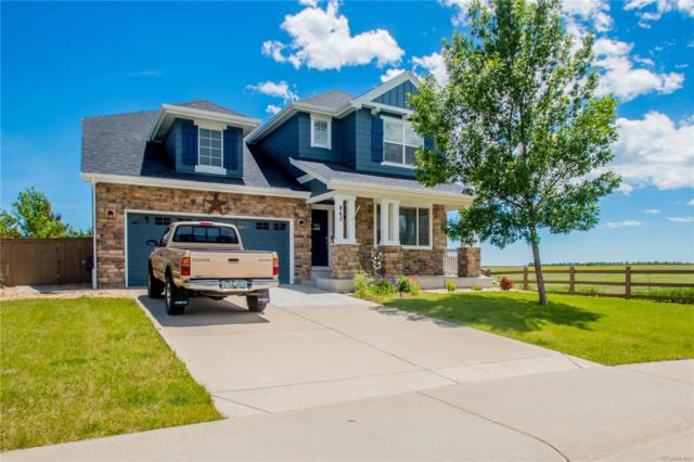 862 Kendrick Court, Castle Rock, CO 80104 (#4242475) :: Mile High Luxury Real Estate