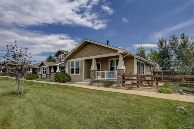 16857 Buffalo Valley Path, Monument, CO 80132 (#4245001) :: Bicker Realty