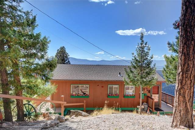 13501 Callae Court, Conifer, CO 80433 (MLS #4246425) :: 8z Real Estate