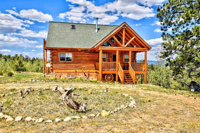 100 Galahad Circle, Hartsel, CO 80449 (MLS #4247129) :: 8z Real Estate