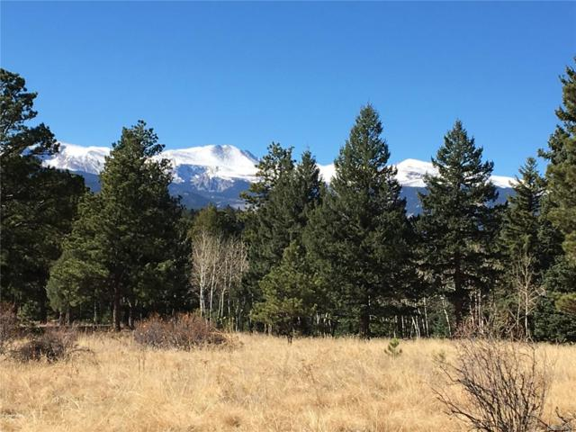 33391 Buffalo Park Road, Evergreen, CO 80439 (#4249570) :: The Pete Cook Home Group